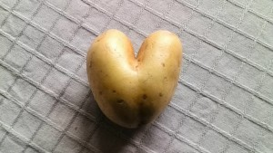 amour patate