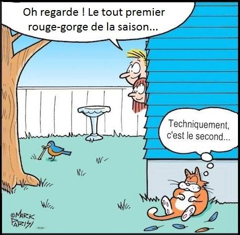 coup d'humour